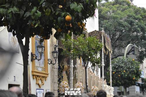 Extraordinaria Encarnación de San Benito (Sevilla) Diciembre 2019 12